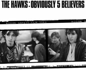 The hawks-obviously 5 believers vinyl nine