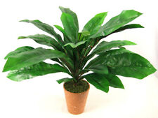 Potted Artificial Silk Plant Bird Nest Fern ~ House plant