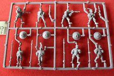 Games Workshop Warhammer Empire Men at Arms Spears Handgunners Lion Shields New