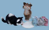 Catissimo Vincenzo & Pasque Cat Figurines Collectables Gift Boxed Ornaments Cats