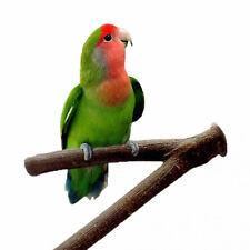 Pet Parrot Bird Standing Stick Wood Pole Bird Cockatiel Bird Cage Accessories Jg