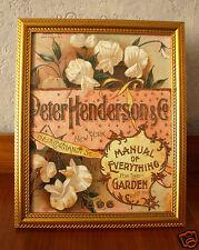 Sweet Pea Flower framed print 10x8 vintage wall art home decor shabby chic