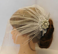 1920's birdcage veil w Boho Gatsby Wedding Lace Crystal Hair Clip Bridal Blusher