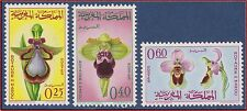 1965 MAROC N°494/496** Fleurs : ORCHIDEES, 1965 MOROCCO Flowers Orchids Set MNH