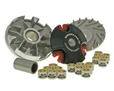 CPI Aragon GP 50 High Speed Race Variator Rollers Pulley
