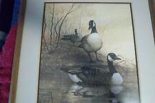 RJ McDonald signed numbered framed print(ducks/geese)
