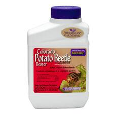 Colorado Potato Beetle Spray Organic Gardening For Colorado Potato Beetle Larvae