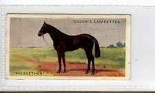 (Jc3857-100)  OGDENS,DERBY ENTRANTS 1928,PHLEGETHON,1928,#35