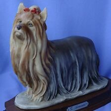 1983 YORKSHIRE SILKY  TERRIER DOG ARMANI 9""