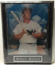 Mickey Mantle Wall Plaque New York Yankees MLB Baseball The Mick Number 7