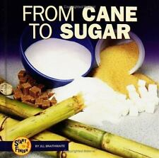 From Cane to Sugar (Start to Finish (Lerner Hardcover))-ExLibrary