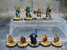 Warhammer LOTR Fellowship of The Ring Painted Metal (Y214)