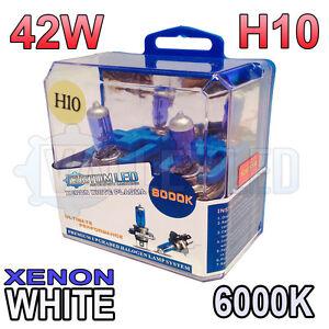 Xeno Bianco H10 42w Alogena Fendinebbia Faro Lampadine 6000k (Coppia) 9145