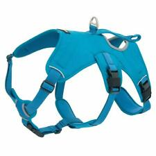 Best Pet Supplies Inc. Voyager Padded/Breathable Dog Walking Harness (Turquoise)