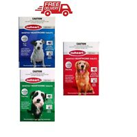 Heartworm Tablets For Dogs Meat Flavored Small To Large 2 - 40 KG Nuheart  X 6