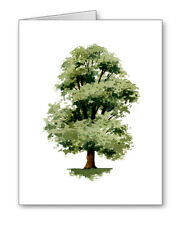 Elm Tree Note Cards With Envelopes