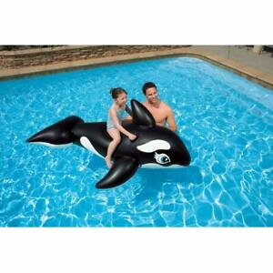 Whale Ride On For Kids Of 6 months - 3 years, Multicolor,Free Shipping Worldwide