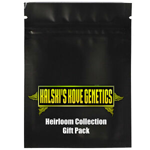 Auto Heirloom Flower Seeds Gift Pack Souvenirs 5x