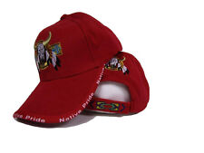 Bull Skull Buffalo Indian Native Pride Red Embroidered Ball Cap Hat