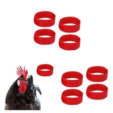 10 Pezzi Collare Di Pollo Collare Gallo Anti Corvo Per Pollame Pollo Anatra