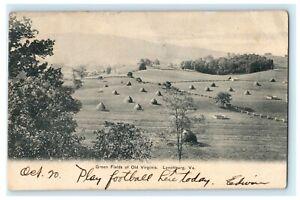 1906 Green Fields of Old Virginia Lynchburg VA Football Posted Antique Postcard