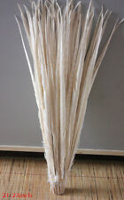 Wholesale! 10-100 Pcs 25 -60 cm / 10-24 inch natural pheasant tail feathers Hot
