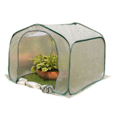 Plastic Tent Checks Greenhouse