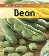 Broad Bean (Life Cycle of a . . .)-ExLibrary