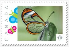 uq. CLEAR WINGS BUTTERFLY = Insects= Picture Postage MNH Canada 2019 [p19-01s25]