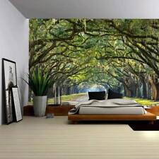 Wall26 - Long Pathway in an Arch Tree Covered Forest Wall - CVS - 66x96 inches