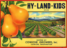 *Original* HY-LAND-KIDS Orchard Mountain Wash PEAR Crate Label NOT A COPY!