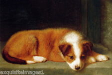 Late 1800's Art~Cauldery~Resting Collie Puppy Dog~New Large Note Cards