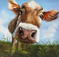 "Large close up Colourful Cow wall art printed on canvas 22'' X 22"" solid frame"