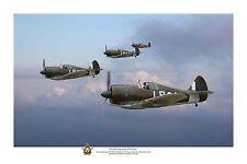 "WWII WW2 RAAF CAC Boomerang Pacific Aviation Art Photo Print - 12"" X 18"""