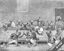 DOGS IN A MEETING HALL FUN FIGHT LOUIS WAIN PAINTING DOG ART REAL CANVAS PRINT