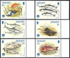 JERSEY 1998 I Y Oceano/TORDO/Sgombri/skate/PESCE/Marino/NATURA SET 6v (b6209)