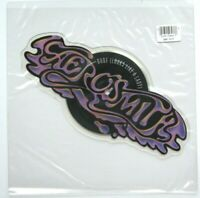 NEW! AEROSMITH DUDE LOOKS LIKE A LADY Shaped Vinyl Picture Pic Disc LOGO