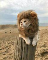 Peluca disfraz de leon para gato mascota ropa complementos