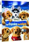 """DVD """"Les Copains des neiges"""" NEUF SOUS BLISTER"""