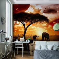 Vlies Fototapete - Afrika Sonnenuntergang - Tapete Wandbilder XXL - Wohnzimmer