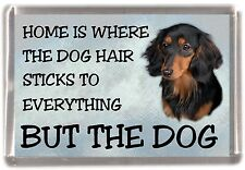 """Dachshund Longhaired Dog Fridge Magnet """"Home is Where"""" Design No 2 by Starprint"""