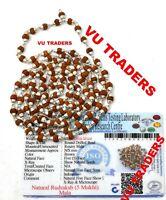 5 Mukhi Rudraksha Mala Rudraksh Rosary Pure Silver 5 MM 108+1 Bead Lab Certified