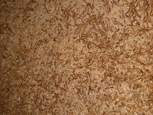 1 Kg lebende Mehlwürmer groß Futtertiere Vogelfutter Reptillienfutter