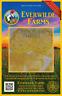 50 White Wonder Beefsteak Heirloom Tomato Seeds - Everwilde Farms Mylar Packet