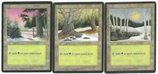 Magic the Gathering MTG Ice Age Forest Terrain Cards Set of 3 Different a