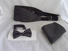 Page Boy-Boys Polyester BLACK with Polka Dots Bow tie + Cummerbund and Hanky Set