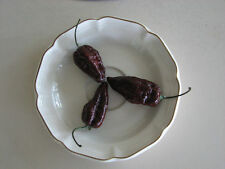 Chocolate Ghost Pepper Seeds(Naga Jolokia, Bhut Jolokia) 24 SEEDS