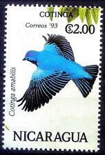 Nicaragua 1993 MNH, Birds, Cottinga Amabilis, Lovely Cotinga - G177
