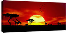 "Large Africa Sunset Canvas Wall Art Picture 42""x20"""