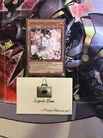 Yu-Gi-OH!:  Floraison De Cendres Et Joyeux Printemps   SDSB-FR019  Commune  1st